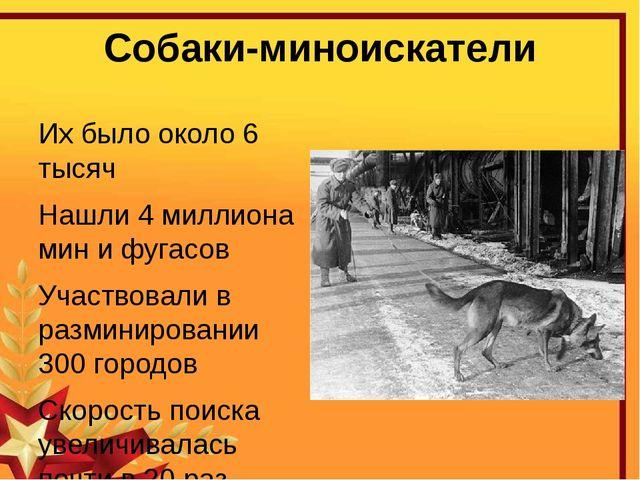 Собаки-миноискатели Их было около 6 тысяч Нашли 4 миллиона мин и фугасов Учас...