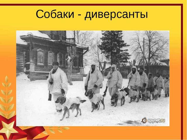 Собаки - диверсанты