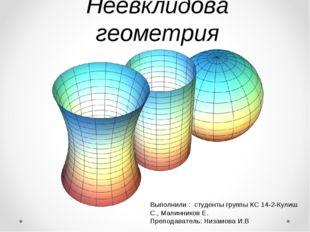Неевклидова геометрия Выполнили : студенты группы КС 14-2-Кулиш С., Малиннико