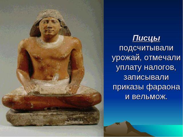 Писцы подсчитывали урожай, отмечали уплату налогов, записывали приказы фараон...