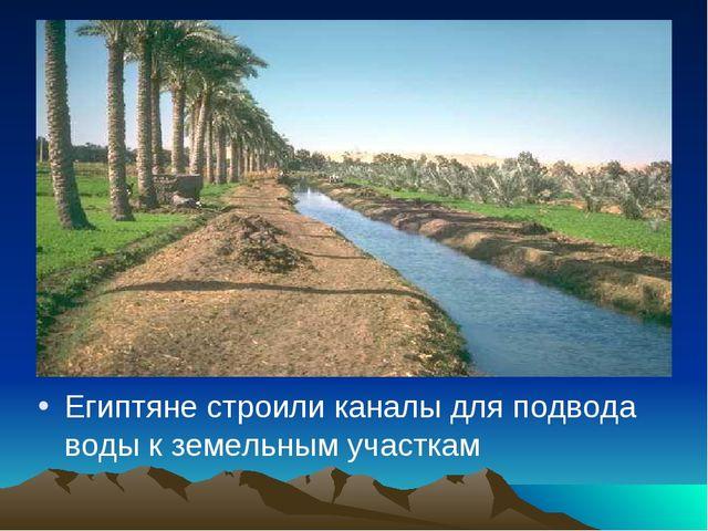 Египтяне строили каналы для подвода воды к земельным участкам