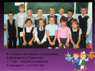 В 1 классе обучаются 13 учащихся. 8 мальчиков и 5 девочек. С 7 лет – пошли 8
