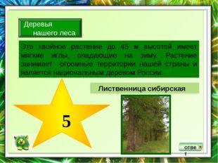 ответ Плауны встречаются преимущественно в еловых лесах, а хвощи –в смешанны