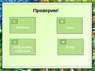 ответ Василий Васильевич Докучаев 10 История лесоразведения Ученый-почвовед,