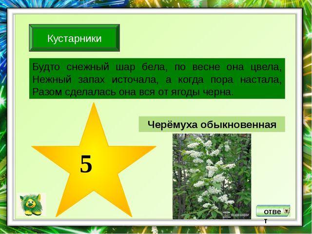 ответ Крапива двудомная 5 Эту траву и слепой знает. В растении содержатся ви...