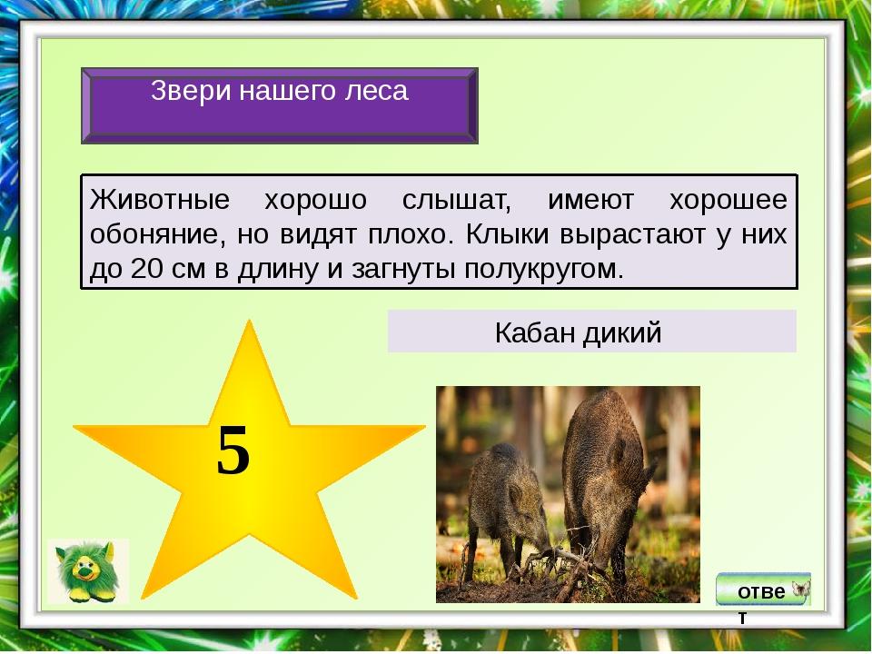 Список литературы и ресурсов Интернет: 1.Акимушкин И.И. Мир животных: Млекопи...