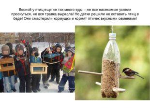Весной у птиц еще не так много еды – не все насекомые успели проснуться, не в