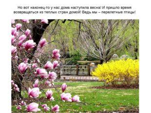 Но вот наконец-то у нас дома наступила весна! И пришло время возвращаться из