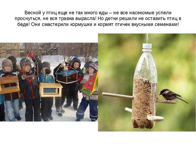 Весной у птиц еще не так много еды – не все насекомые успели проснуться, не в...