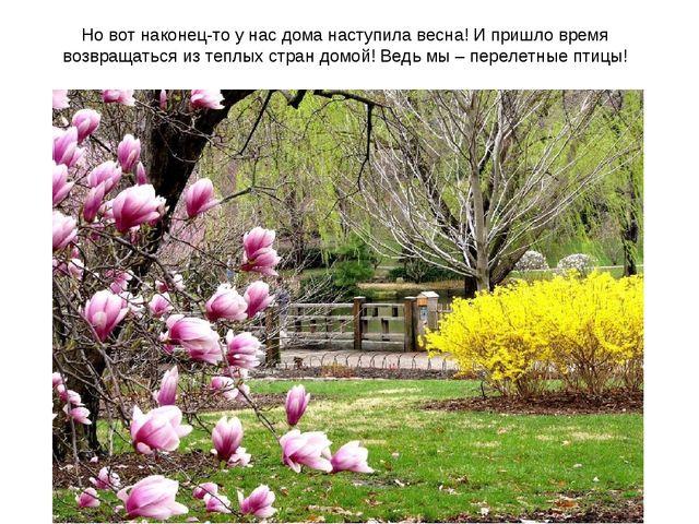 Но вот наконец-то у нас дома наступила весна! И пришло время возвращаться из...