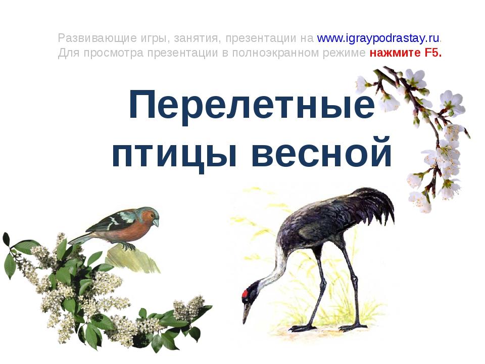 Развивающие игры, занятия, презентации на www.igraypodrastay.ru. Для просмотр...