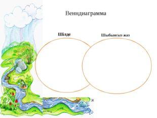 Венндиаграмма Шілде Шыбынсыз жаз