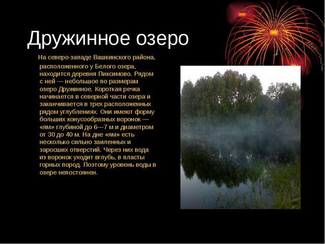 Дружинное озеро На северо-западе Вашкинского района, расположенного у Белого...
