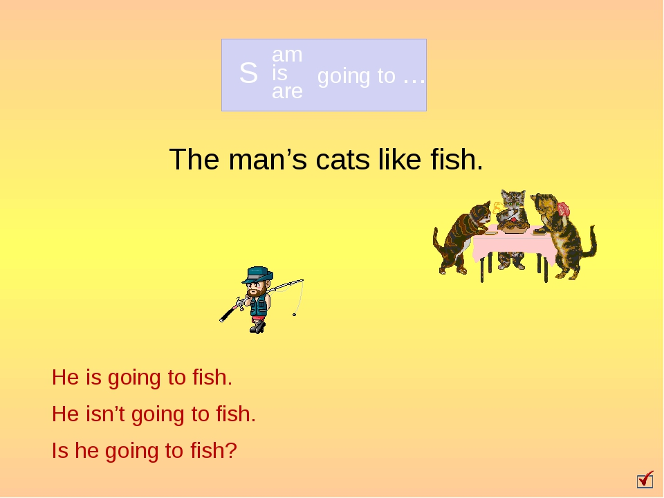 The man's cats like fish. He is going to fish. He isn't going to fish. Is he...