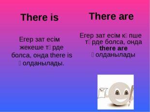 There is Егер зат есім жекеше түрде болса, онда there is қолданылады. There
