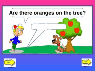No, there are not. Are there oranges on the tree? next home