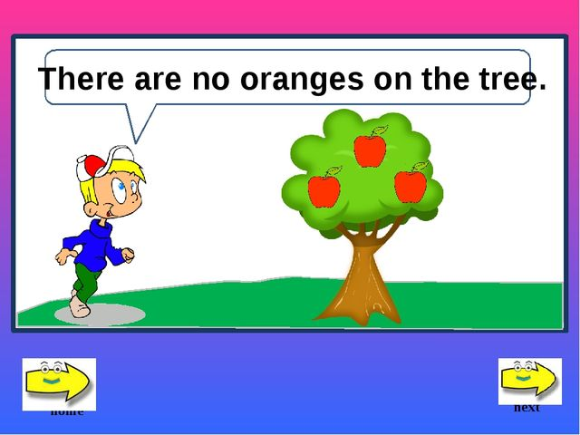 There are no oranges on the tree. next home