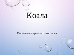 Коала Выполнила кириленко анастасия