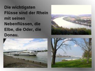 Die wichtigsten Flüsse sind der Rhein mit seinen Nebenflüssen, die Elbe, die