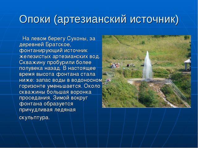 Опоки (артезианский источник) На левом берегу Сухоны, за деревней Братское, ф...