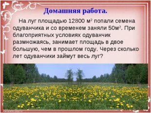 На луг площадью 12800 м2 попали семена одуванчика и со временем заняли 50м2.