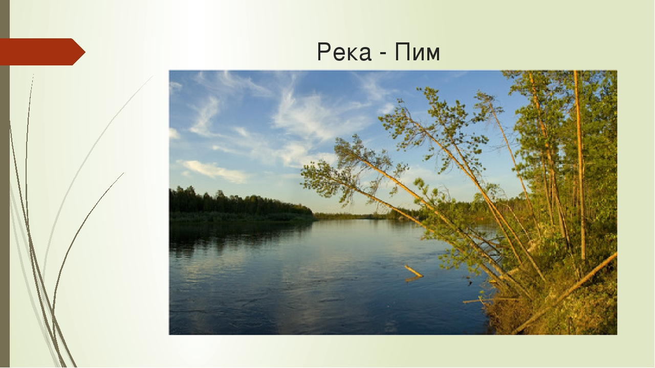 Река - Пим