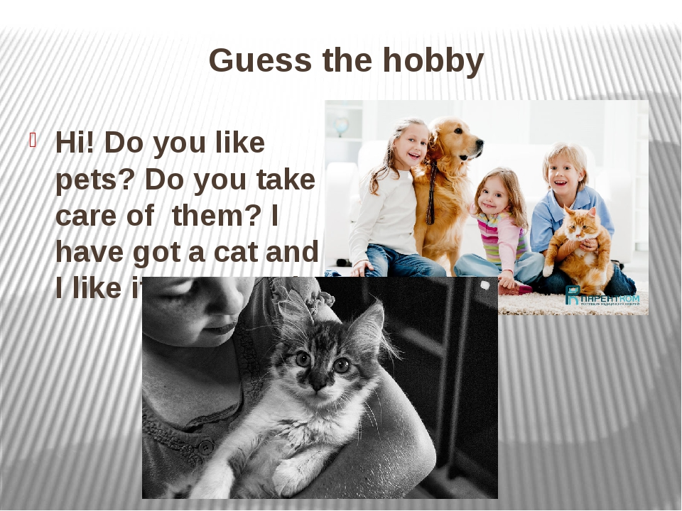 Guess the hobby Hi! Do you like pets? Do you take care of them? I have got a...