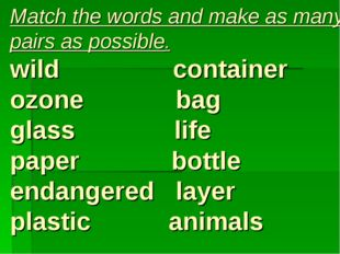 Match the words and make as many pairs as possible. wild container ozone bag