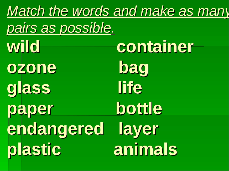 Match the words and make as many pairs as possible. wild container ozone bag...