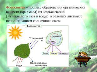 Фотосинтез – процесс образования органических веществ (крахмала) из неорганич