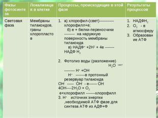 Фазы фотосинтезаЛокализация в клеткеПроцессы, происходящие в этой фазеРезу