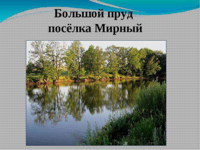 Большой пруд посёлка Мирный