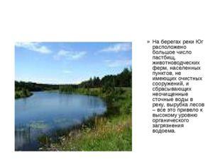 На берегах реки Юг расположено большое число пастбищ, животноводческих ферм,