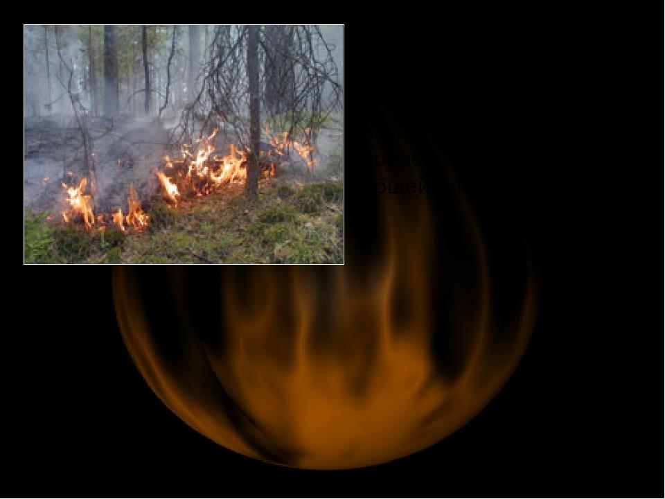 Всего с начала пожароопасного периода 2006 г. на территории РФ возникло 26205...
