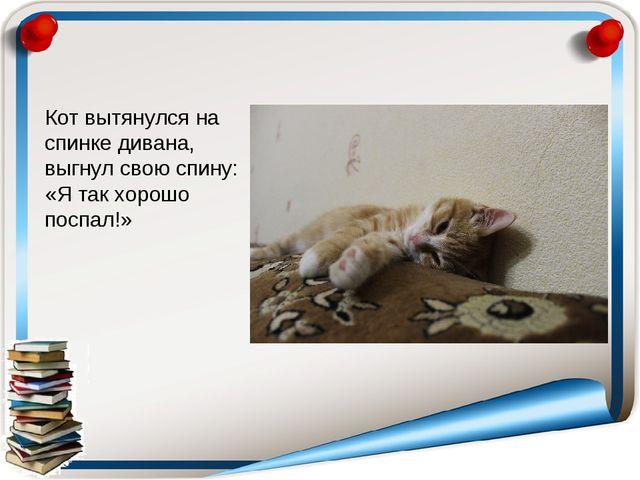 Кот вытянулся на спинке дивана, выгнул свою спину: «Я так хорошо поспал!»