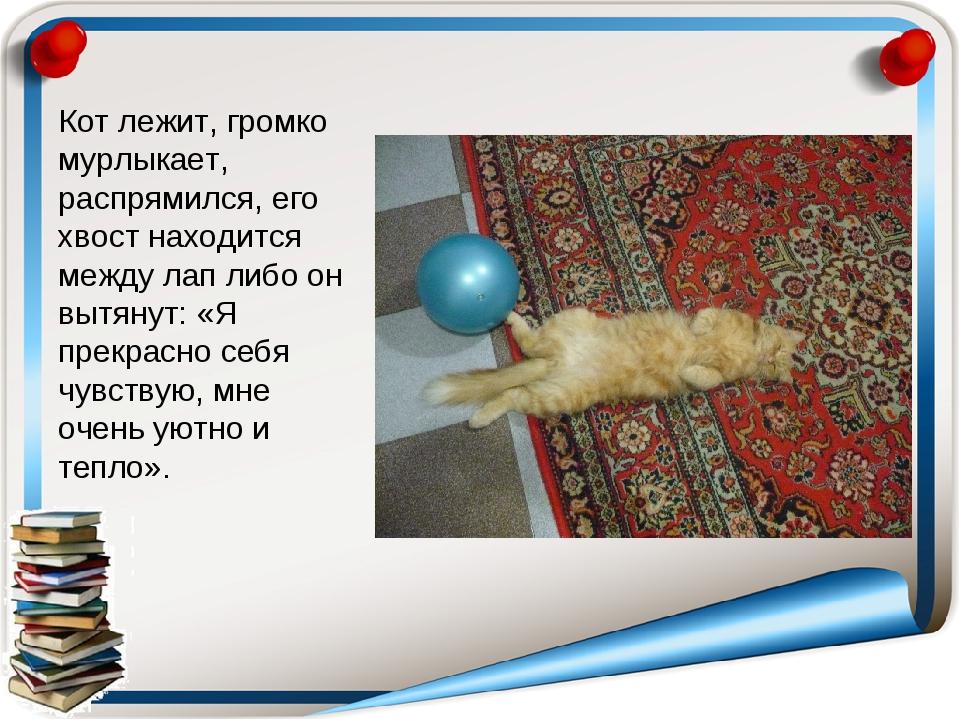 Кот лежит, громко мурлыкает, распрямился, его хвост находится между лап либо...