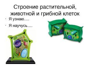 Строение растительной, животной и грибной клеток Я узнаю…. Я научусь….