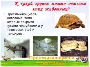 Пресмыкающиеся (рептилии) Пресмыкающиеся- животные, тело которых покрыто сухи