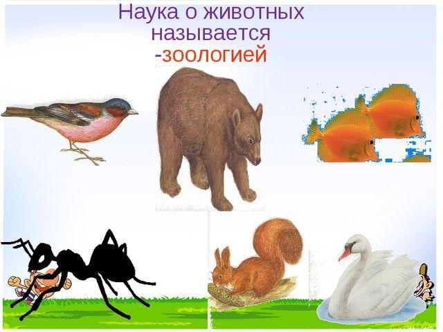 Наука о животных называется -зоологией
