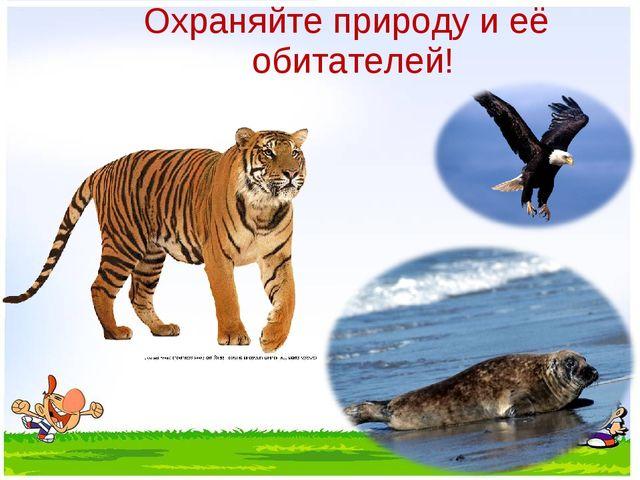 Охраняйте природу и её обитателей!