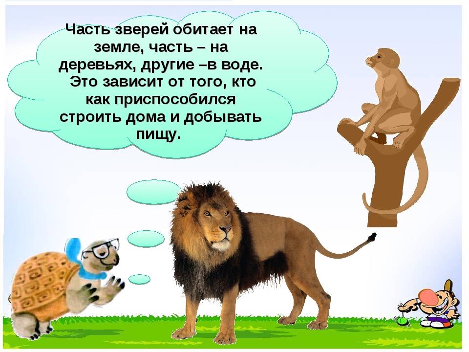 Часть зверей обитает на земле, часть – на деревьях, другие –в воде. Это завис...