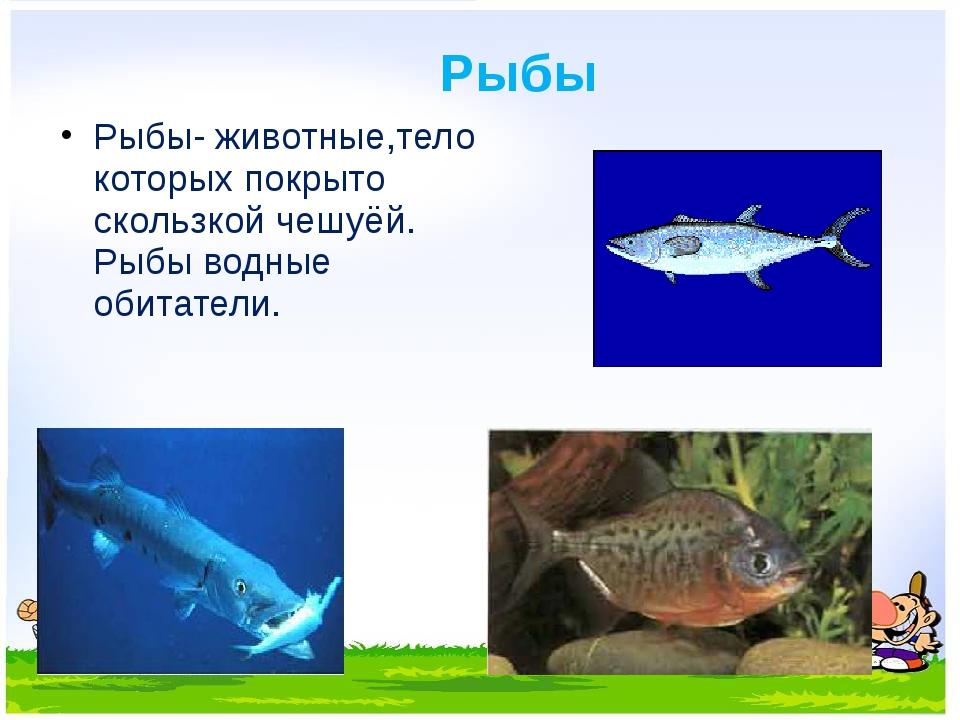 Рыбы Рыбы- животные,тело которых покрыто скользкой чешуёй. Рыбы водные обитат...