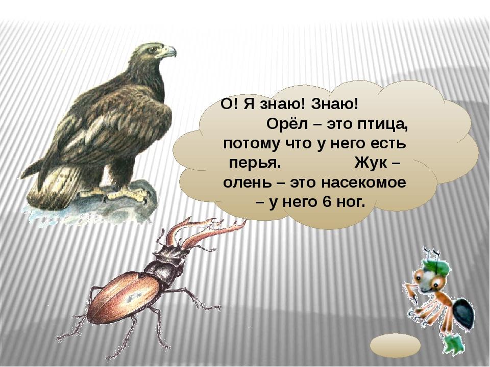О! Я знаю! Знаю! Орёл – это птица, потому что у него есть перья. Жук – олень...