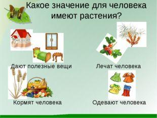 Какое значение для человека имеют растения? Кормят человека Лечат человека Да