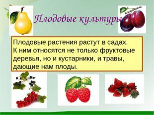 Плодовые культуры Плодовые растения растут в садах. К ним относятся не тольк