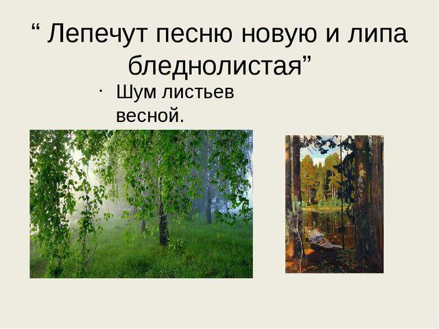""""""" Лепечут песню новую и липа бледнолистая"""" Шум листьев весной."""