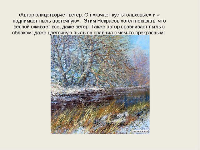 •Автор олицетворяет ветер. Он «качает кусты ольховые» и « поднимает пыль цвет...