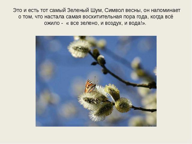 Это и есть тот самый Зеленый Шум, Символ весны, он напоминает о том, что нас...