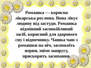 Ромашка — корисна лікарська рослина. Вона лікує людину від застуди. Ромашка
