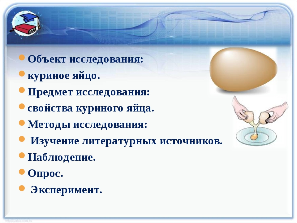 Объект исследования: куриное яйцо. Предмет исследования: свойства куриного яй...